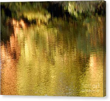 Autum Abstract Canvas Print - Autumn Water by Lee Craig