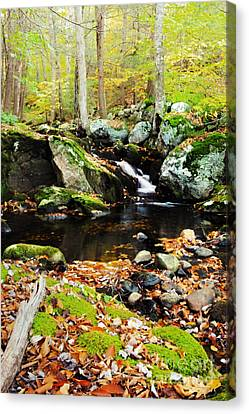 Autumn Waterfall Canvas Print by HD Connelly