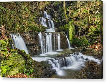 Autumn Waterfall Canvas Print by Ian Mitchell