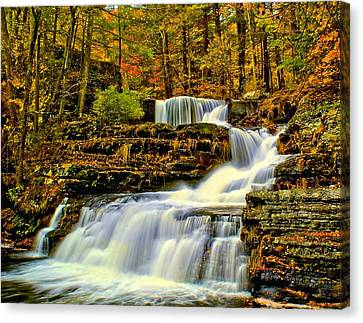 Autumn By The Waterfall Canvas Print by Nick Zelinsky