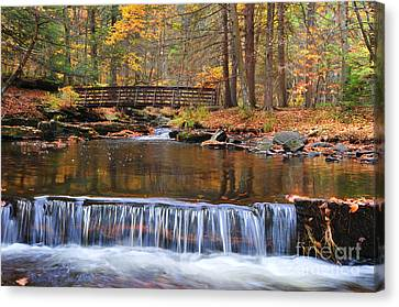 Autumn Waterfalls Canvas Print by Paul Ward