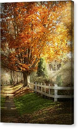 Giclee Trees Canvas Print - Autumn - Westfield Nj - I Love Autumn by Mike Savad