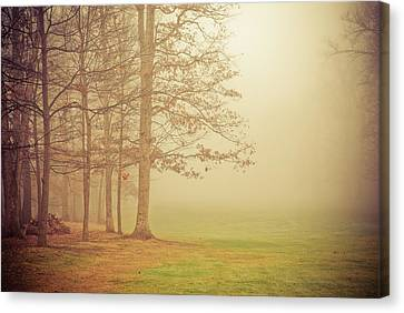 Autumn Whisper Canvas Print by Olivia StClaire