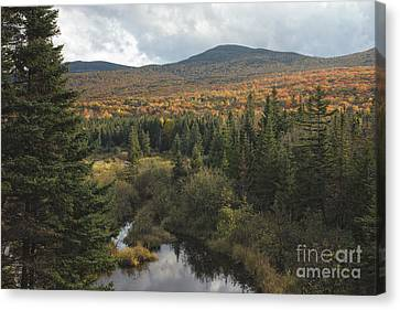 Autumn - White Mountains New Hampshire Canvas Print by Erin Paul Donovan