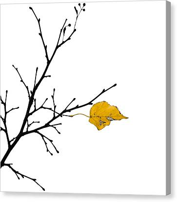 Autumn Winds - Featured 3 Canvas Print by Alexander Senin