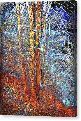 Autumn Scene Canvas Print - Autumn Woods by Ann Powell