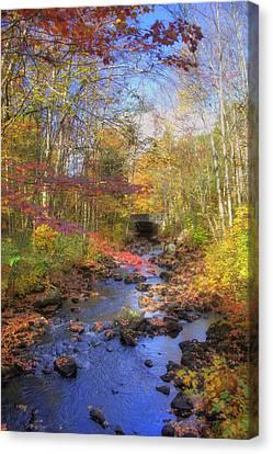 Autumn Woods Canvas Print by Joann Vitali