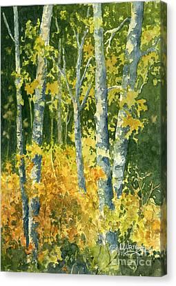 Autumn Woods Canvas Print