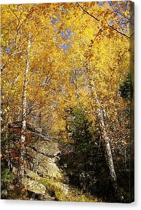 Autumn Canvas Print by Zina Stromberg
