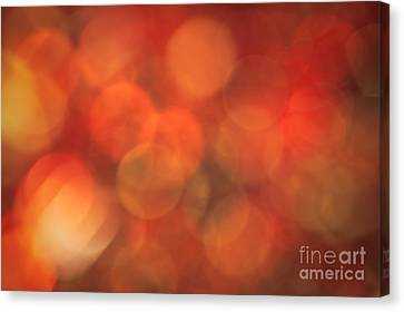 Autumnal Amber Canvas Print