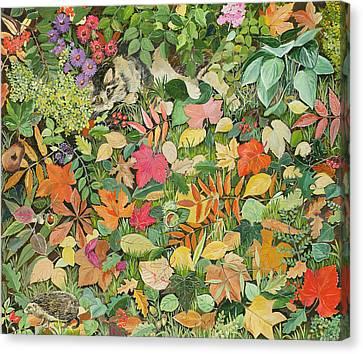 Autumnal Cat Canvas Print