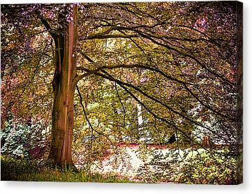 Autumnal Colors In The Summer Time. De Haar Castle Park Canvas Print by Jenny Rainbow