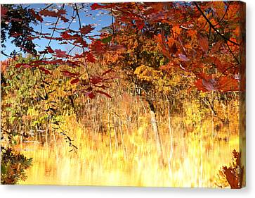 Autumnal Fire Canvas Print by James Hammen
