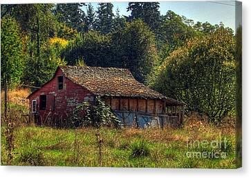Autumnal Hdr Canvas Print by Chris Anderson