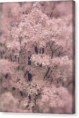 Autumnal Impression Canvas Print by Tim Good