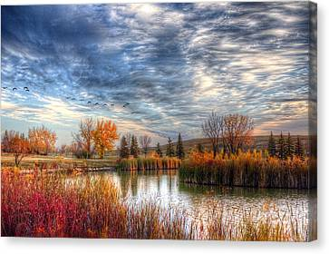 Autumnal Morn Canvas Print by Larry Trupp