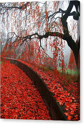Canvas Print featuring the digital art Autumnal Red by Bruce Rolff