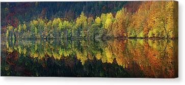 Autumnal Silence Canvas Print