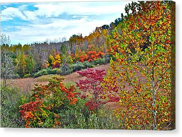Autumnal Vista Canvas Print by Frozen in Time Fine Art Photography