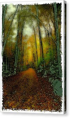 Autumns Back Roads Canvas Print