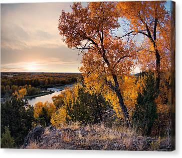 Autumns Best Canvas Print