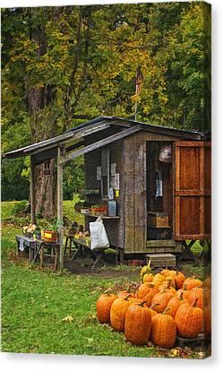 Autumn's Bounty Canvas Print by Priscilla Burgers