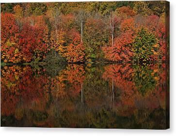 Autumns Design Canvas Print by Karol Livote