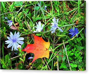 Canvas Print featuring the photograph Autumns First Leaf by Jackie Carpenter