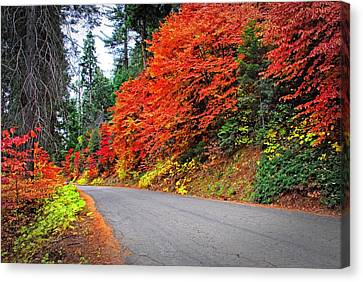 Canvas Print featuring the photograph Autumn's Glory by Lynn Bauer