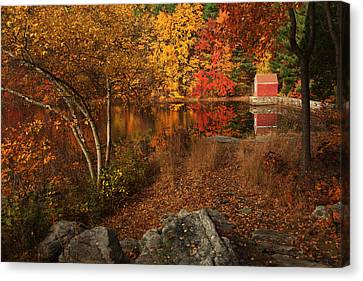 Autumns Path Canvas Print by Karol Livote