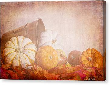 Autumn's Pick Canvas Print by Heidi Smith