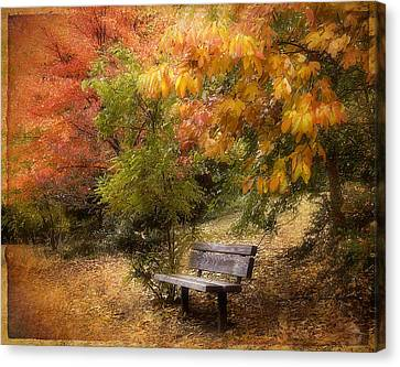 Autumn's Repose Canvas Print by Jessica Jenney
