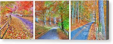 Autumns Way Canvas Print by John Kelly