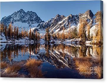 Autumns Winter Coat Canvas Print by Mike Reid