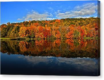 Autumnscape Canvas Print by Karol Livote
