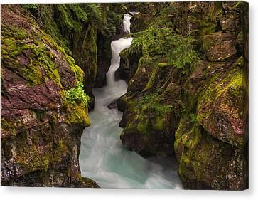 West Glacier Canvas Print - Avalanche Falls by Mark Kiver
