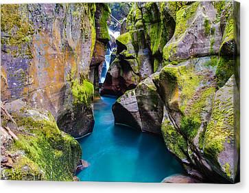 West Glacier Canvas Print - Avalanche Gorge 1 Of 4 by Adam Mateo Fierro