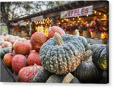 Farm Stand Canvas Print - Avila Evening by Caitlyn  Grasso