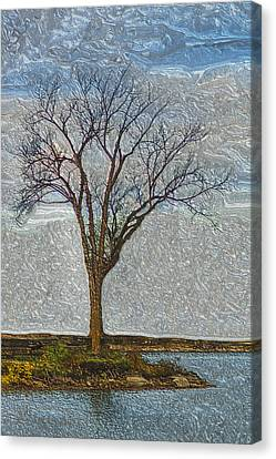 Long-lived Canvas Print - Awaiting Change by Jack Zulli