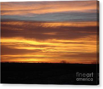 Awaken The Day Canvas Print