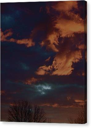 Awakened Canvas Print by Tim Good