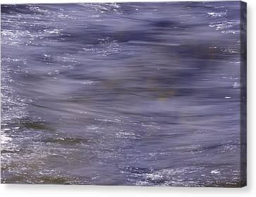 Awakening - Eveil Canvas Print by Vinci Photo