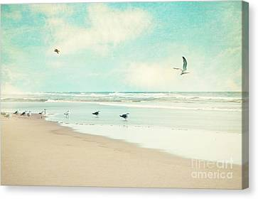 Canvas Print featuring the photograph Away We Go by Sylvia Cook