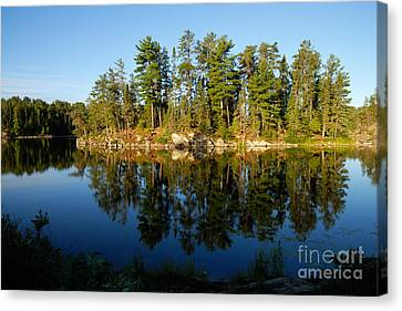 Awesub Morning 2 Canvas Print by Larry Ricker