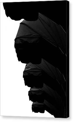 Awnings In Black Canvas Print