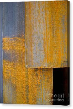 Axis Canvas Print by Robert Riordan