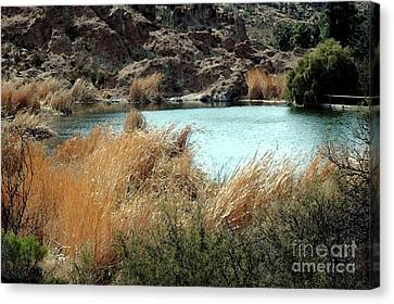 Ayer Lake Canvas Print by Kathleen Struckle