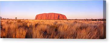 Ayers Rock, Uluru-kata Tjuta National Canvas Print by Panoramic Images