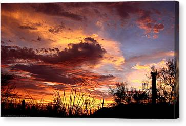 Az Monsoon Sunset Canvas Print by Elaine Malott