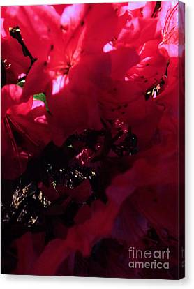 Canvas Print featuring the photograph Azalea Abstract by Robyn King